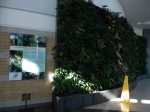 Living wall biofilter at the Direct Energy Center