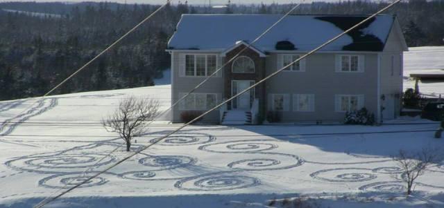 Karen Coleman snow spirals
