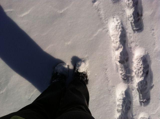 snowspirals03