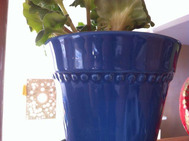 capebretoncolourweek-blue02