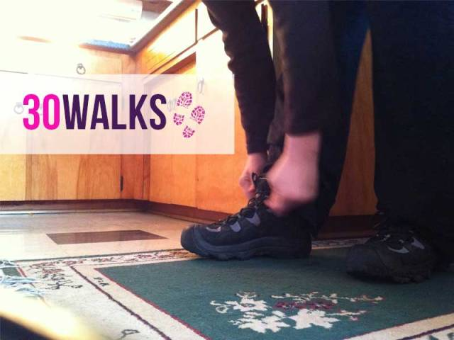30Walks-intrographic
