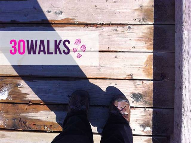 30Walks-intrographic2