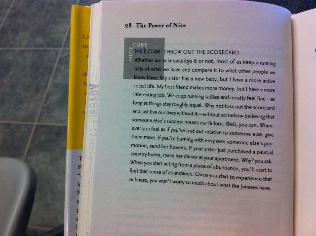 """Excerpt from """"The Power of Nice"""" by Linda Kaplan Thaler and Robin Koval. Book Report by Leah Noble."""