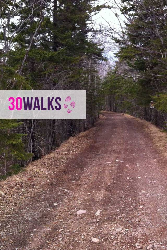 30Walks-johnsonlake-1
