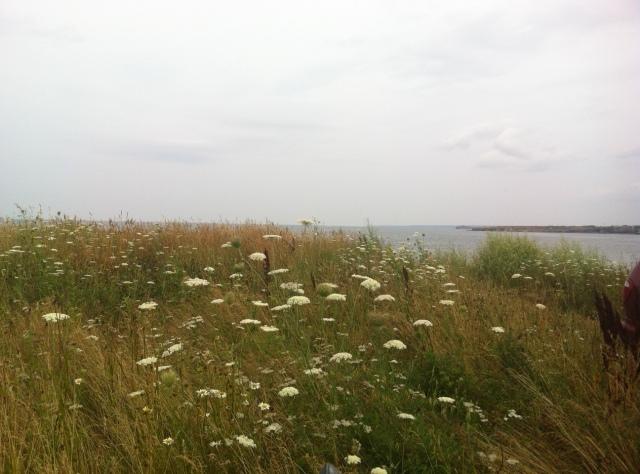 florencebeach