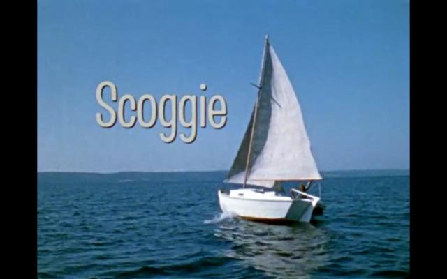 scoggie6